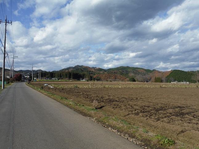 hanawa2.jpg