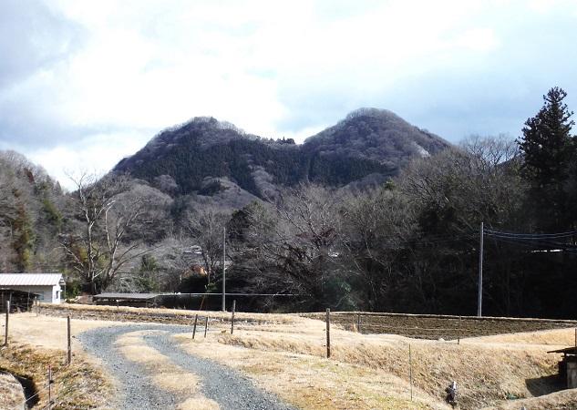 tsukiore1.jpg