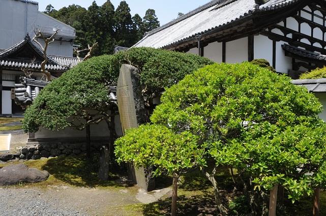 zuiganji3.jpg