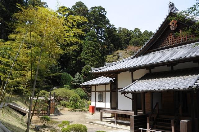 zuiganji5.jpg
