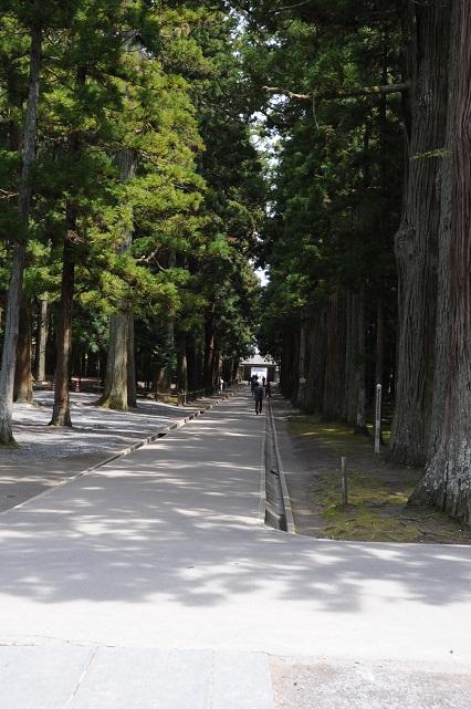 zuiganji7.jpg