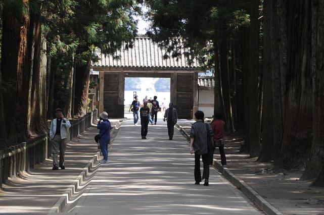 zuiganji8.jpg